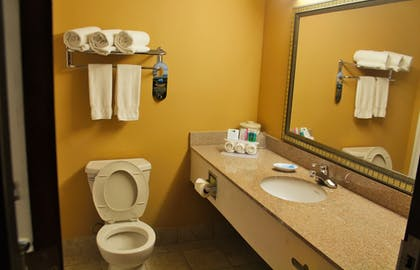 In-Room Amenity | Holiday Inn Express Hotel & Suites Lexington-Hwy 378