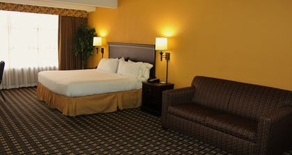 Guestroom | Holiday Inn Express Hotel & Suites Lexington-Hwy 378
