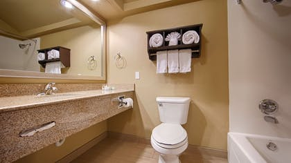 Bathroom | Best Western Plus Arlington North Hotel & Suites