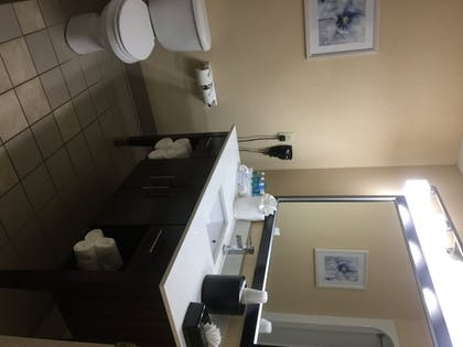 Bathroom | Holiday Inn Express Hotel & Suites SANFORD