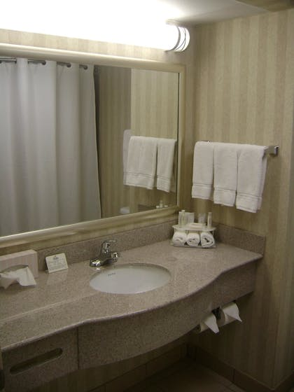 Bathroom Sink | Holiday Inn Express Hotel and Suites Kinston