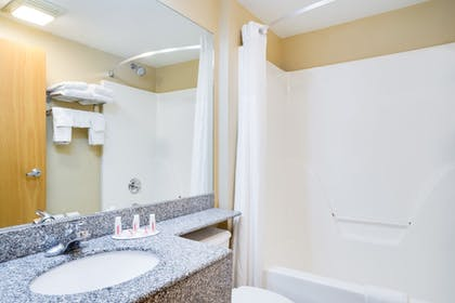 Bathroom | Microtel Inn & Suites by Wyndham Pigeon Forge