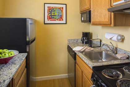 Guestroom   TownePlace Suites by Marriott Metairie New Orleans