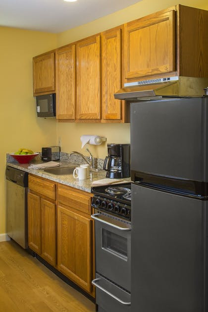 In-Room Kitchenette   TownePlace Suites by Marriott Metairie New Orleans