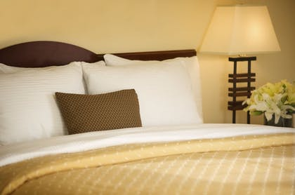 | Executive Suite Accessible | Larkspur Landing Campbell - An All-Suite Hotel