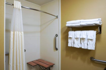 Bathroom Shower | Best Western Plus Georgetown Corporate Center Hotel