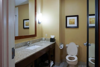 Bathroom Sink | Best Western Plus Georgetown Corporate Center Hotel