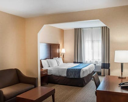 Room | Comfort Inn And Suites Hamburg