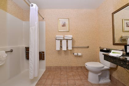 Bathroom | Holiday Inn Express Hotel & Suites Idaho Falls