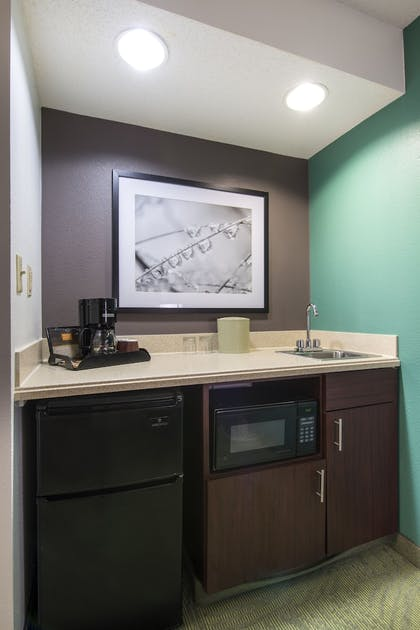 In-Room Kitchenette | Springhill Suites by Marriott Williamsburg