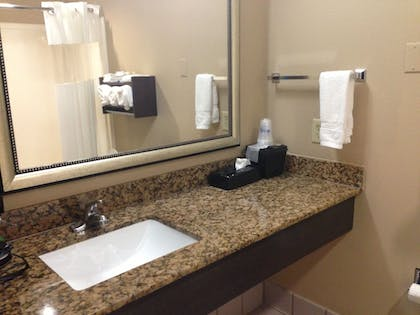 Bathroom Sink | Best Western Bayou Inn & Suites