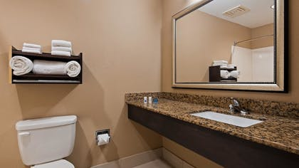 Bathroom | Best Western Bayou Inn & Suites