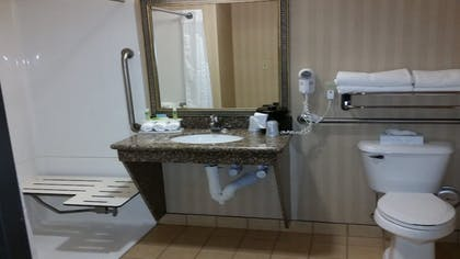 In-Room Amenity | Holiday Inn Express & Suites New Buffalo
