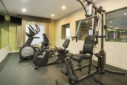 Fitness Facility | Holiday Inn Express Hotel & Suites Kalamazoo