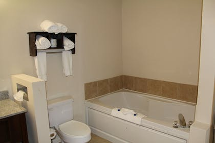 Bathroom | Best Western Port Huron Blue Water Bridge