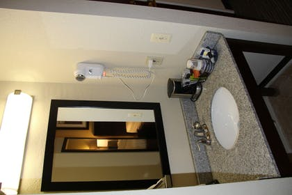 Bathroom Sink | Best Western Port Huron Blue Water Bridge