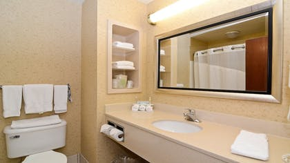 Bathroom | Holiday Inn Express Hotel & Suites Fort Atkinson