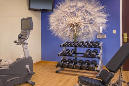 Sports Facility | SpringHill Suites by Marriott Raleigh-Durham Airport/Research Triangle