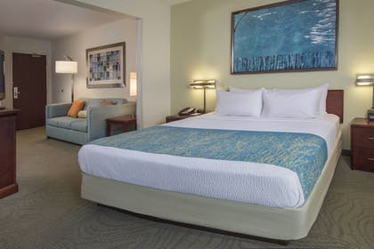 Guestroom | SpringHill Suites by Marriott Raleigh-Durham Airport/Research Triangle