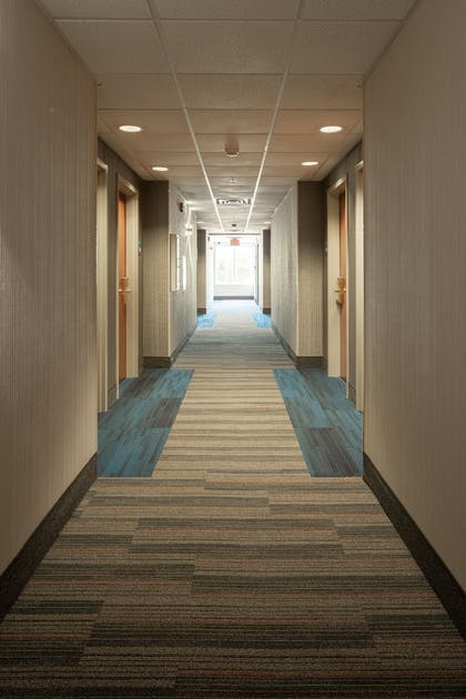 Hallway | Holiday Inn Express Hotel & Suites Chattanooga-Lookout Mtn