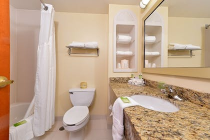 Bathroom | Holiday Inn Express Hotel & Suites Chattanooga-Lookout Mtn