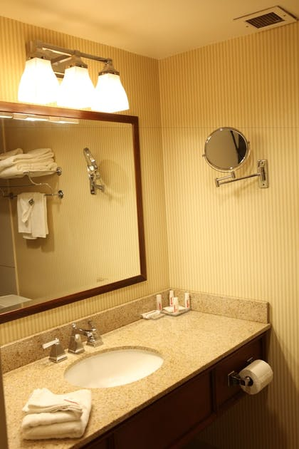 Bathroom | Ramada Plaza by Wyndham Cincinnati Sharonville