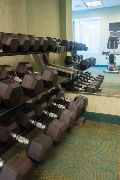 Sports Facility   SpringHill Suites by Marriott Pittsburgh Monroeville