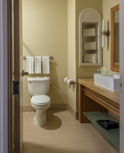 Bathroom | Holiday Inn Express Dallas-North Tollway (N Plano)
