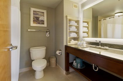 Bathroom | Holiday Inn Express Hotel & Suites Warwick-Providence (Arpt)