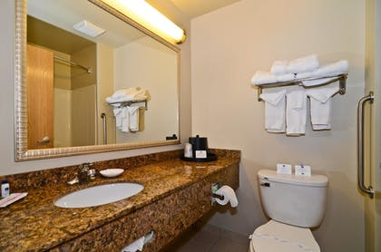 Bathroom | Best Western Chicago Southland