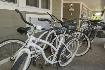 Bicycling | Ivy Court Inn & Suites