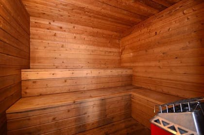 Sauna | Econo Lodge Inn & Suites Bettendorf