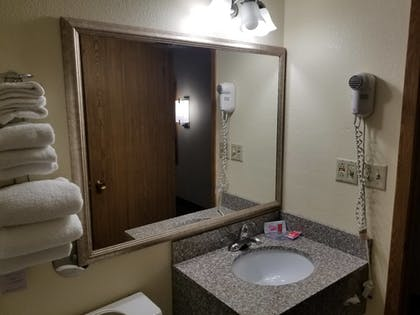 Bathroom | Econo Lodge Inn & Suites Bettendorf