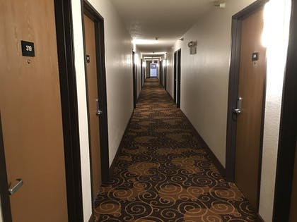 Hallway | Quincy Inn and Suites