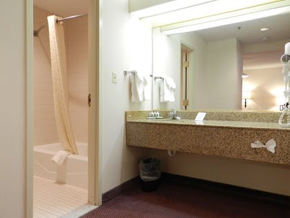 Bathroom | Ashmore Inn and Suites