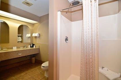 Bathroom | Best Western Plus University Park Inn & Suites