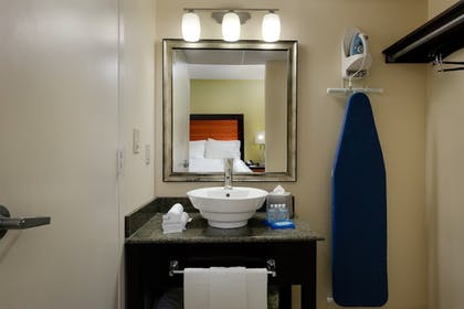 Bathroom | Holiday Inn Express and Suites Atlanta Downtown