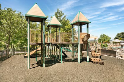 Children's Play Area - Outdoor   Chateau On The Lake Resort Spa and Convention Center