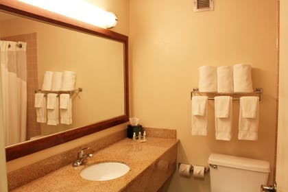Bathroom | Owasso Inn & Suites