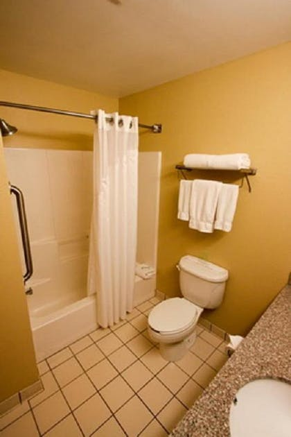 Bathroom | Holiday Inn Express Hotel & Suites Chicago-Algonquin