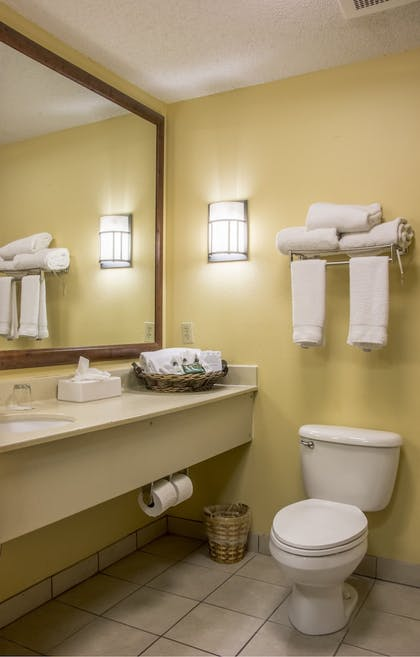 Bathroom | MCM Elegante Lodge & Suites Ruidoso