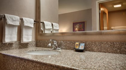 Bathroom | Best Western Borger Inn