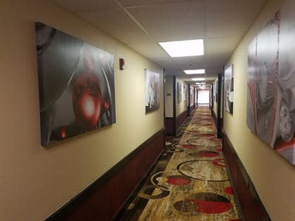Hallway | Super 8 by Wyndham Wichita North