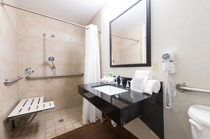 Bathroom Shower   Holiday Inn Express Hotel & Suites Columbia