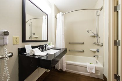 Bathroom   Holiday Inn Express Hotel & Suites Columbia