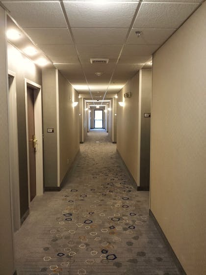 Hallway |  | Courtyard by Marriott Orlando East/UCF Area
