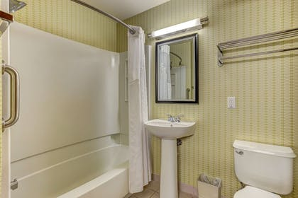 Bathroom | Holiday Inn Express Hotel & Suites Montrose-Townsend
