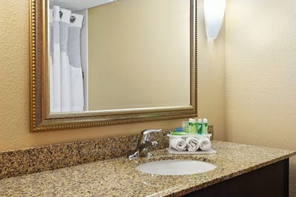 Bathroom   Holiday Inn Express & Suites Knoxville-North-I-75 Exit 112