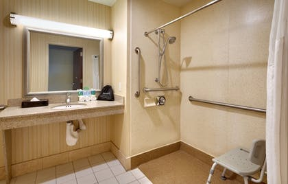 Bathroom Shower | Holiday Inn Express & Suites American Fork - North Provo
