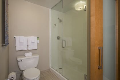 Bathroom | SpringHill Suites San Antonio Downtown/Riverwalk Area